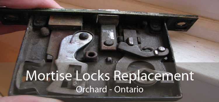 Mortise Locks Replacement Orchard - Ontario