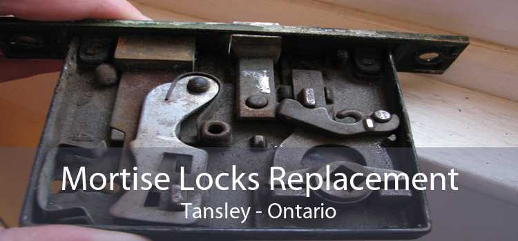 Mortise Locks Replacement Tansley - Ontario